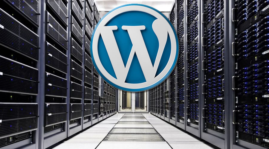 Choose a WordPress Hosting Company. Here's Why It is Essential